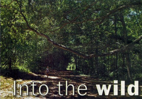 Into the Wild at Price Park